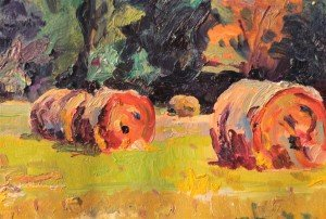 """Red Bales [2] """"Advantages of Special Colour Vision"""" [detail]"""