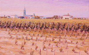Pomerol, baby vines