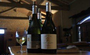 The Queen's Wine, Galien.